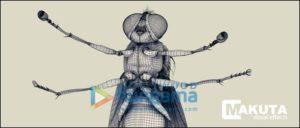 Animation & VFX Maac Chowringhee